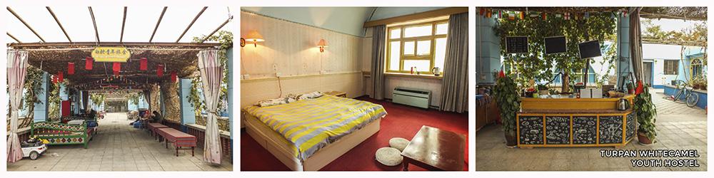 turpan-whitecamel-youth-hostel
