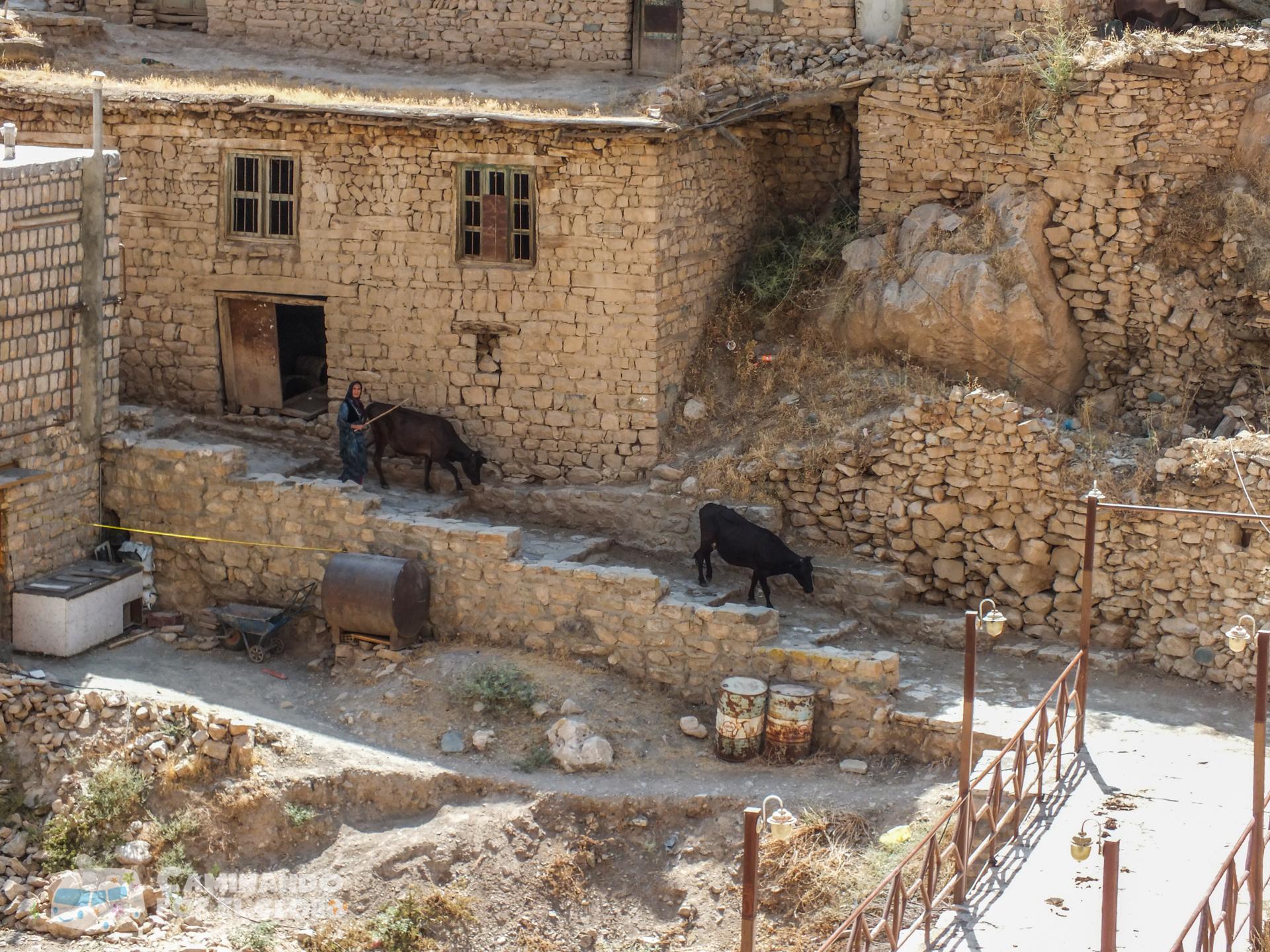 kurdistan-3
